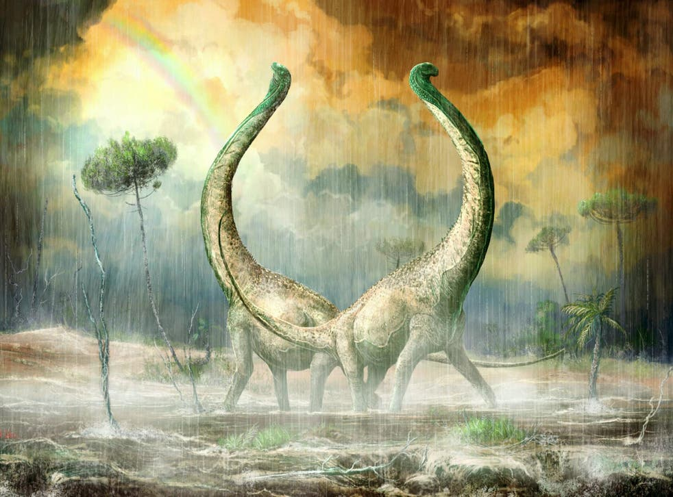 The dinosaur was discovered in Africa (SWNS)