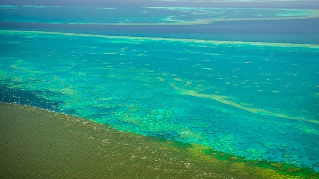 Months after scientists warned that it is at greater risk than ever, the Great Barrier Reef is facing a new challenge: dirty water.