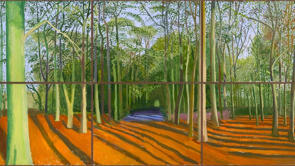 Woldgate Woods