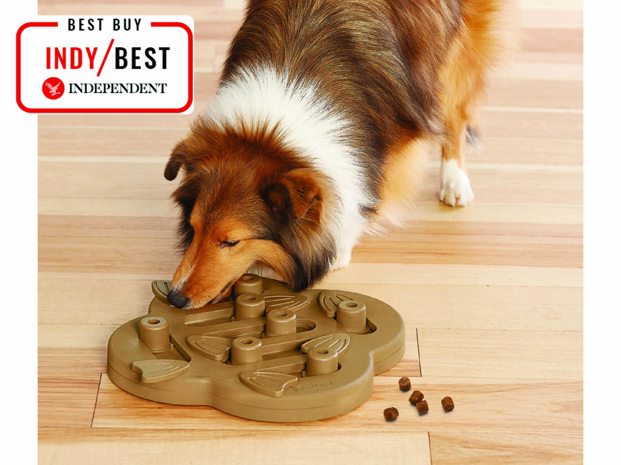 caa4792e2ed15d Our chief tester, a Jack Russell terrier, absolutely loved this toy from ...