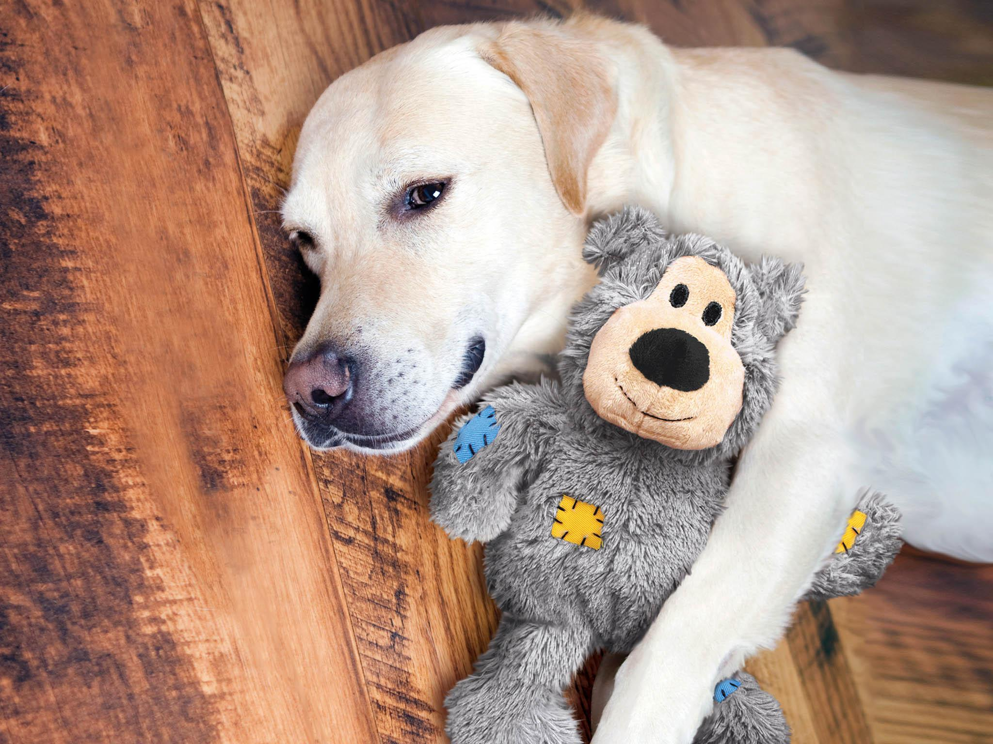 db8e57174 10 best dog toys | The Independent