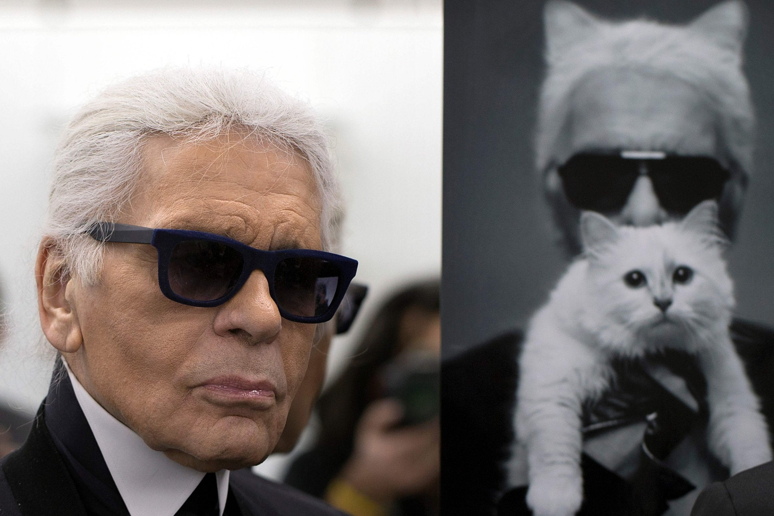 Karl Lagerfeld's famous cat Choupette 'to inherit' £150m fortune