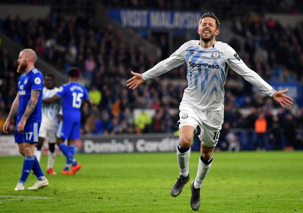 Gylfi Sigurdsson double guides Everton to victory against Cardiff