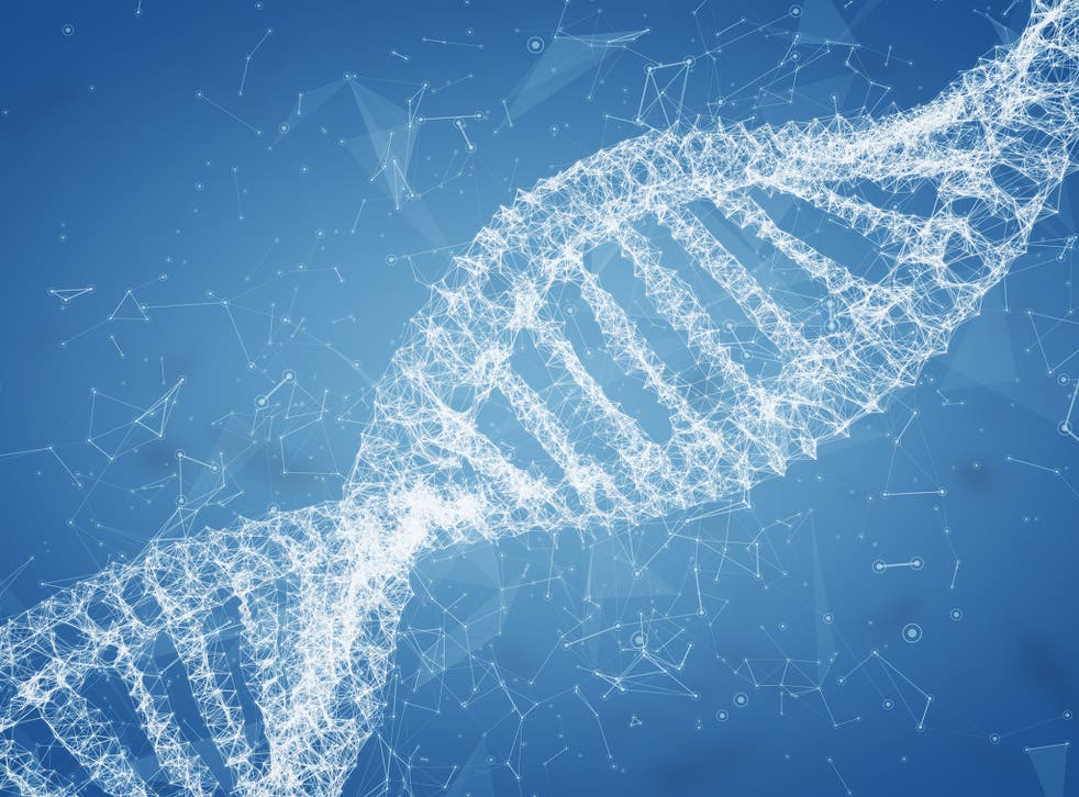 The measures follow assertions in November from scientist He Jiankui that he altered the DNA of twin girls