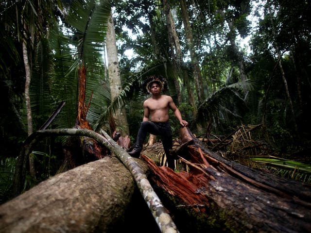 An indigenous man of the Uru-eu-wau-wau tribe which was attacked by invaders armed with machetes and chainsaws on their lands near Campo Novo de Rondonia in January