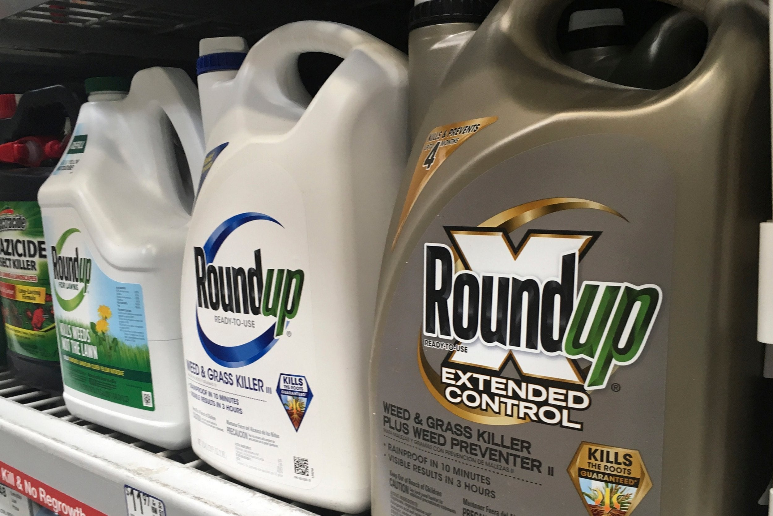 8bc3229387cf1 Bayer shares tumble after court finds that Roundup caused cancer