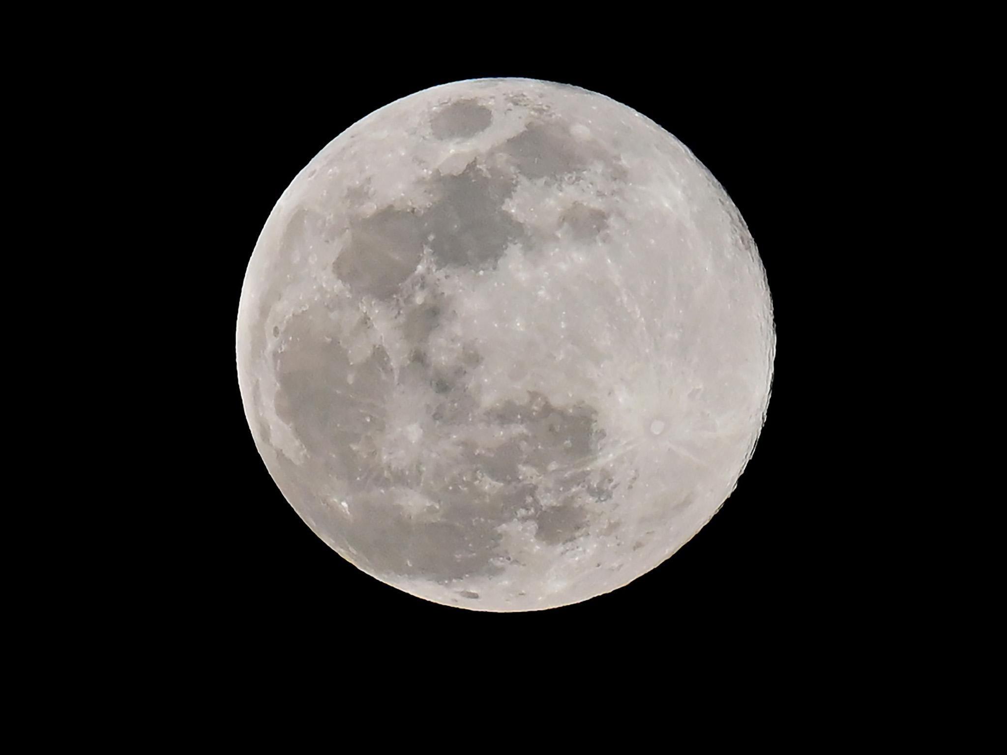 Blue moon 2019: Rare flower full moon tonight will last of its kind