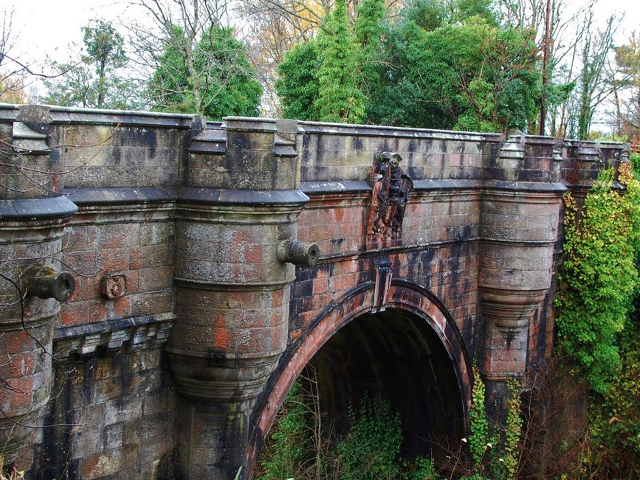 'Dog Suicide Bridge': Why do so many pets keep leaping into a Scottish gorge?