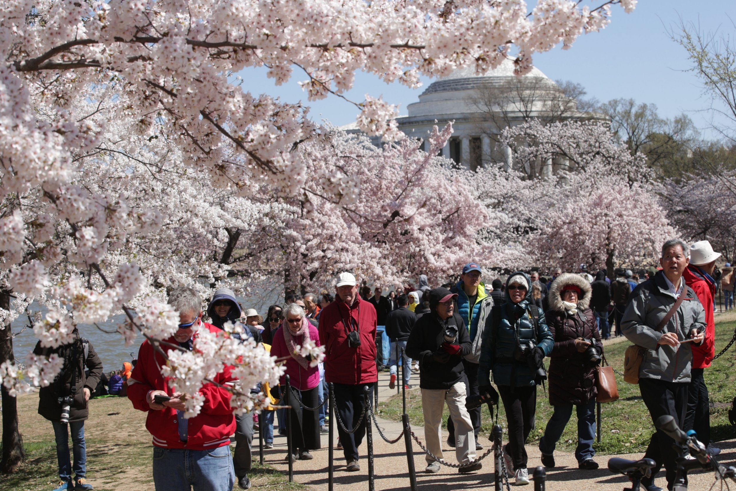 Washington DC travel - latest news, breaking stories and
