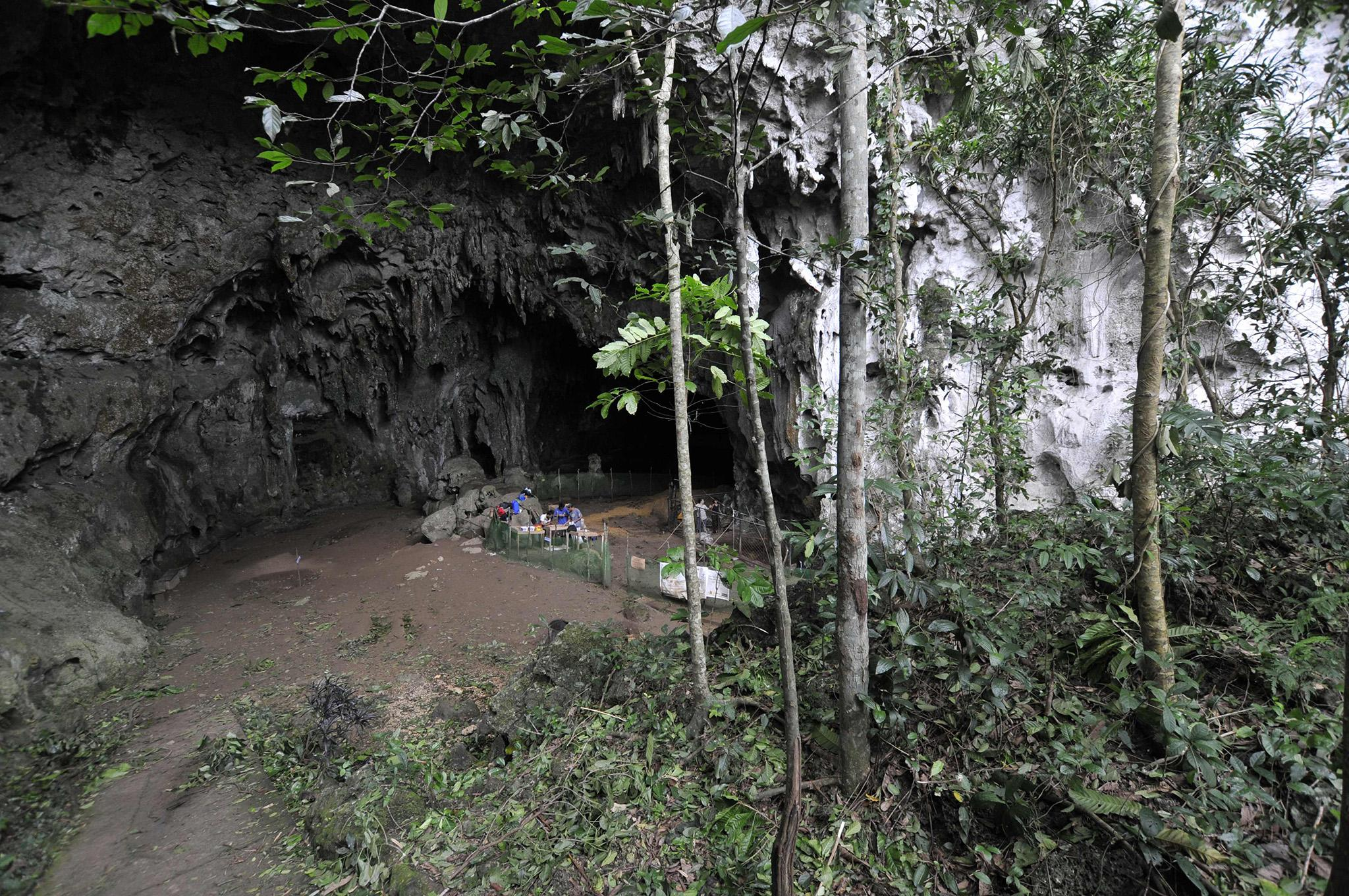 New species of 4ft ancient human discovered in Philippines cave