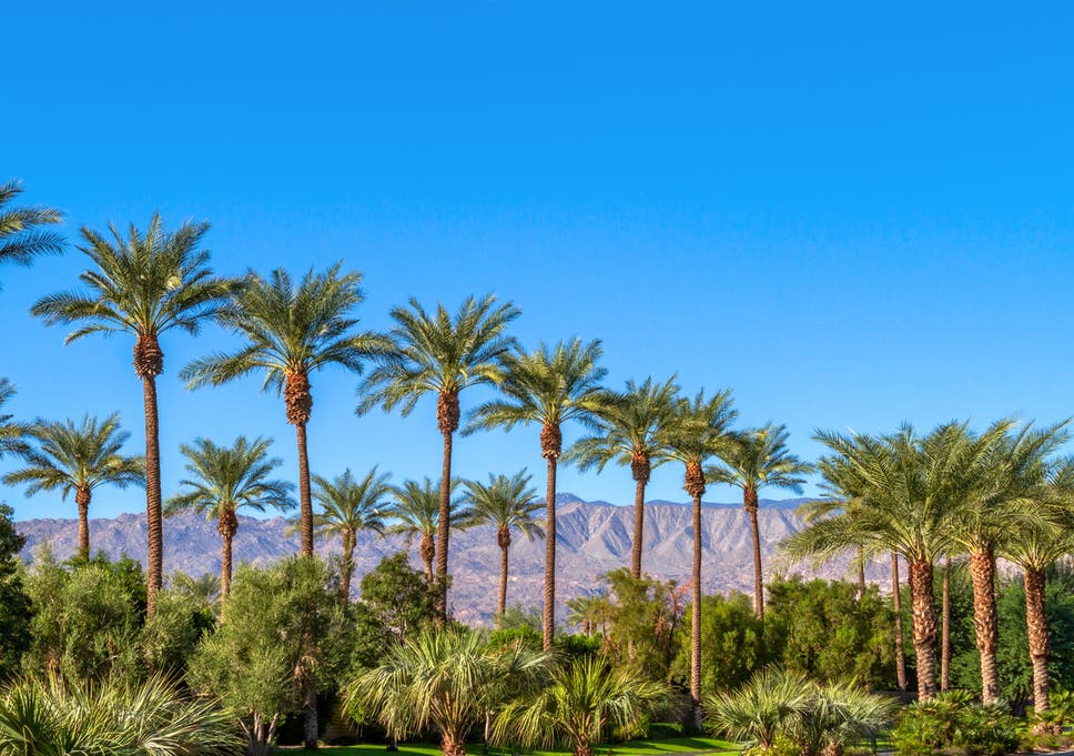 Coachella Valley Dating