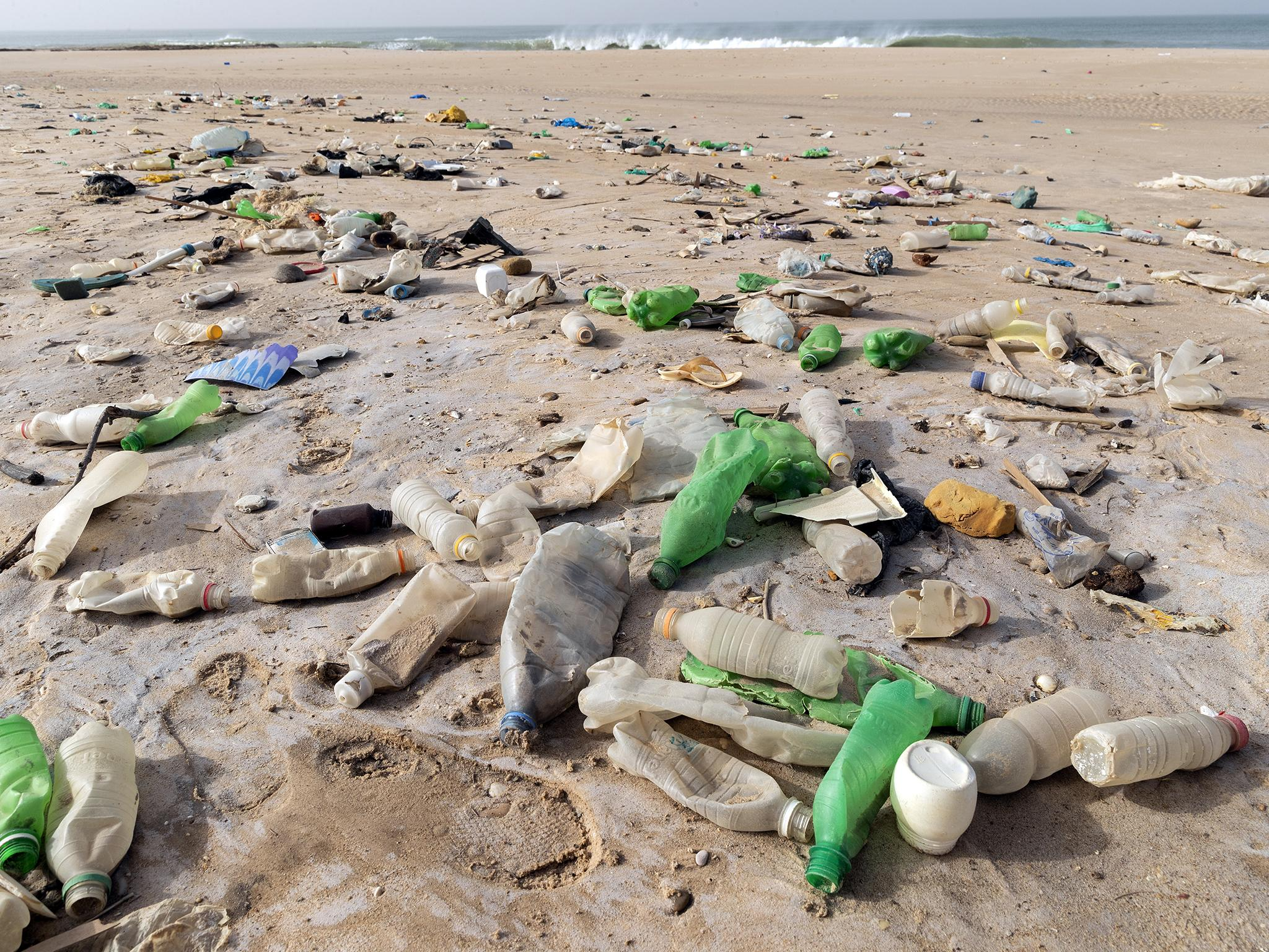 Phoebe Weston Have scientists found the holy grail of plastic?