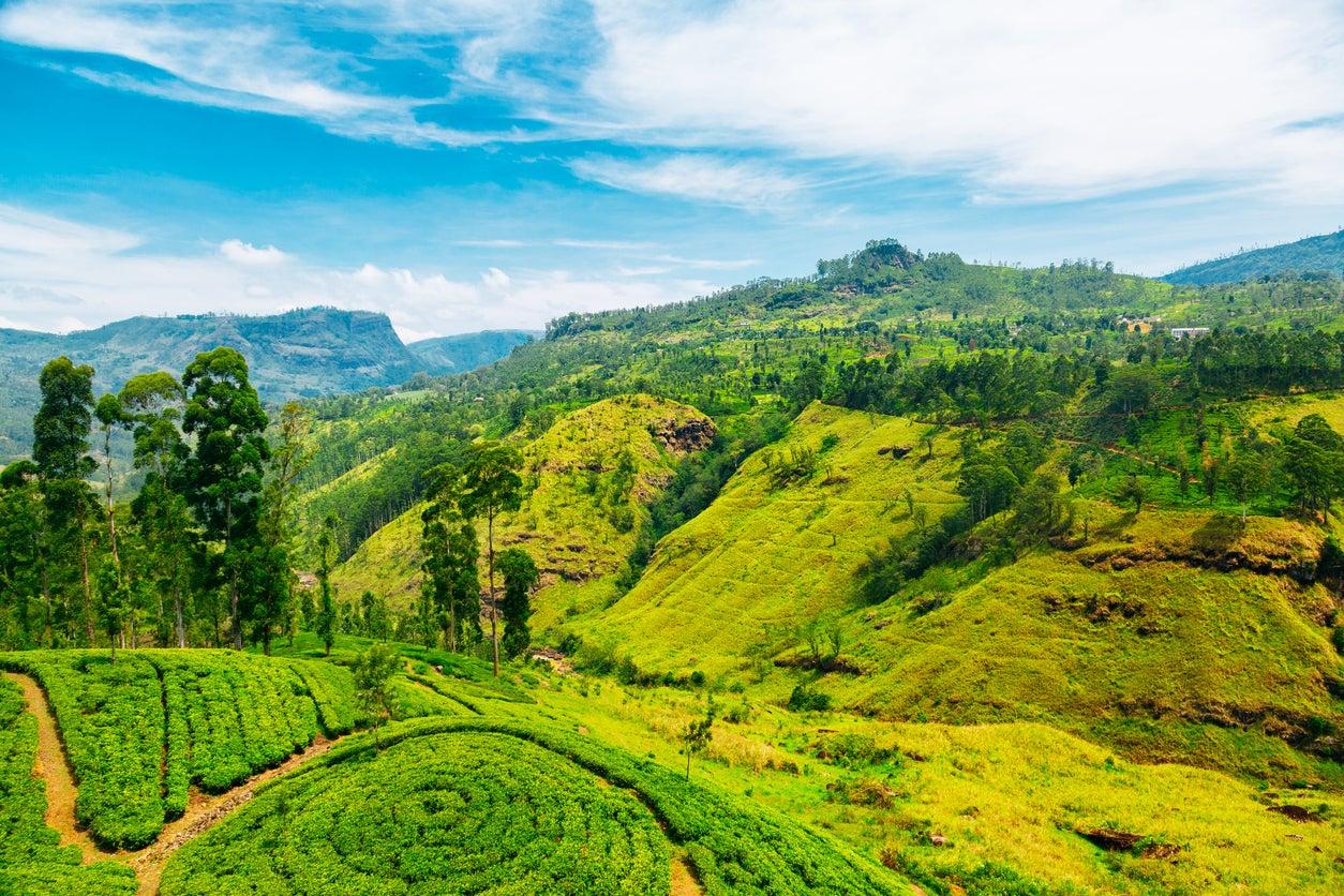 Sri Lanka dating gratis