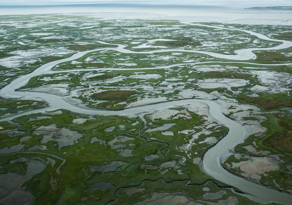 Melting permafrost in Alaska caused by rising global temperatures.