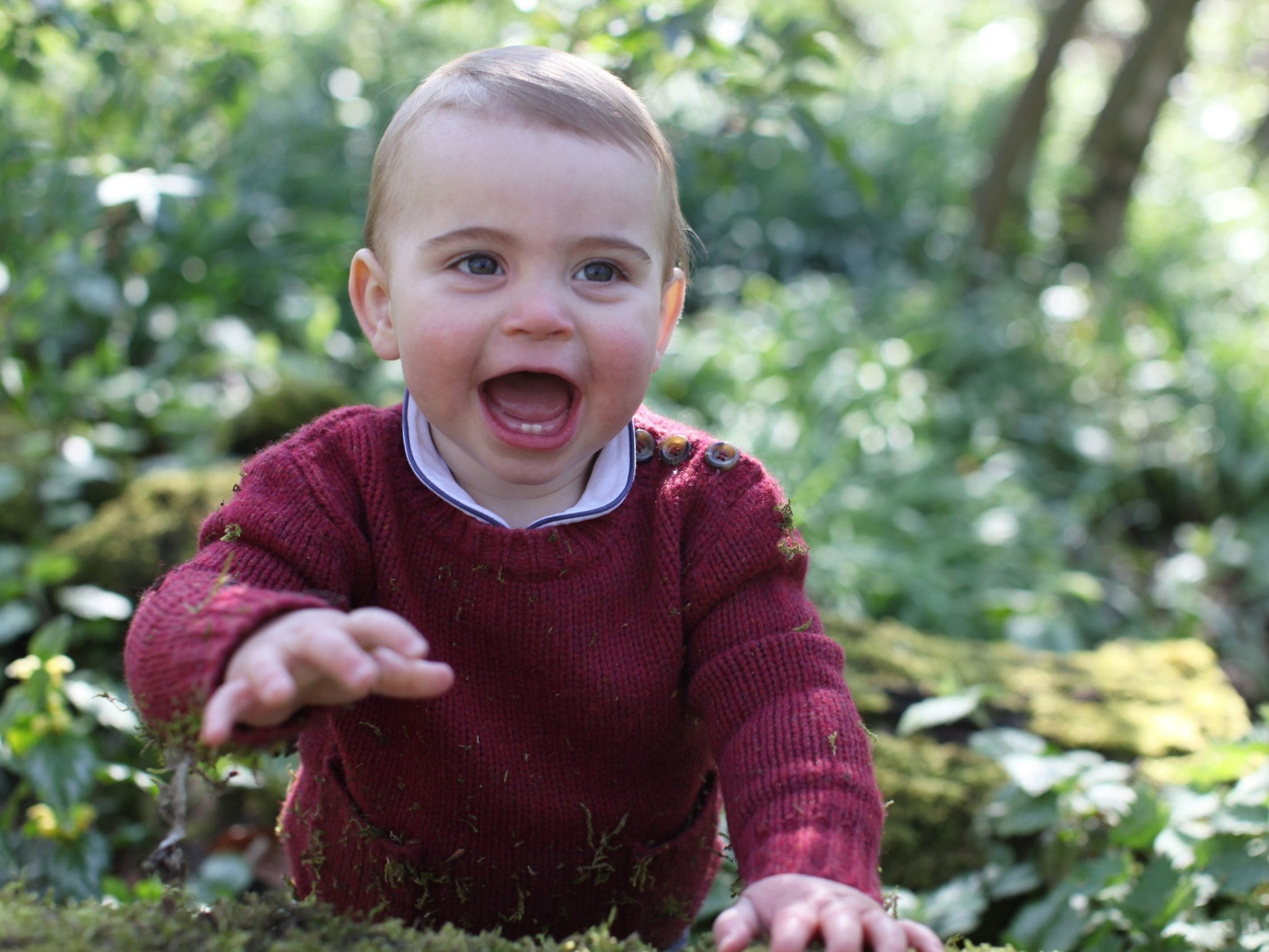 Prince Louis: Kensington Palace releases new photographs to mark royal baby's first birthday