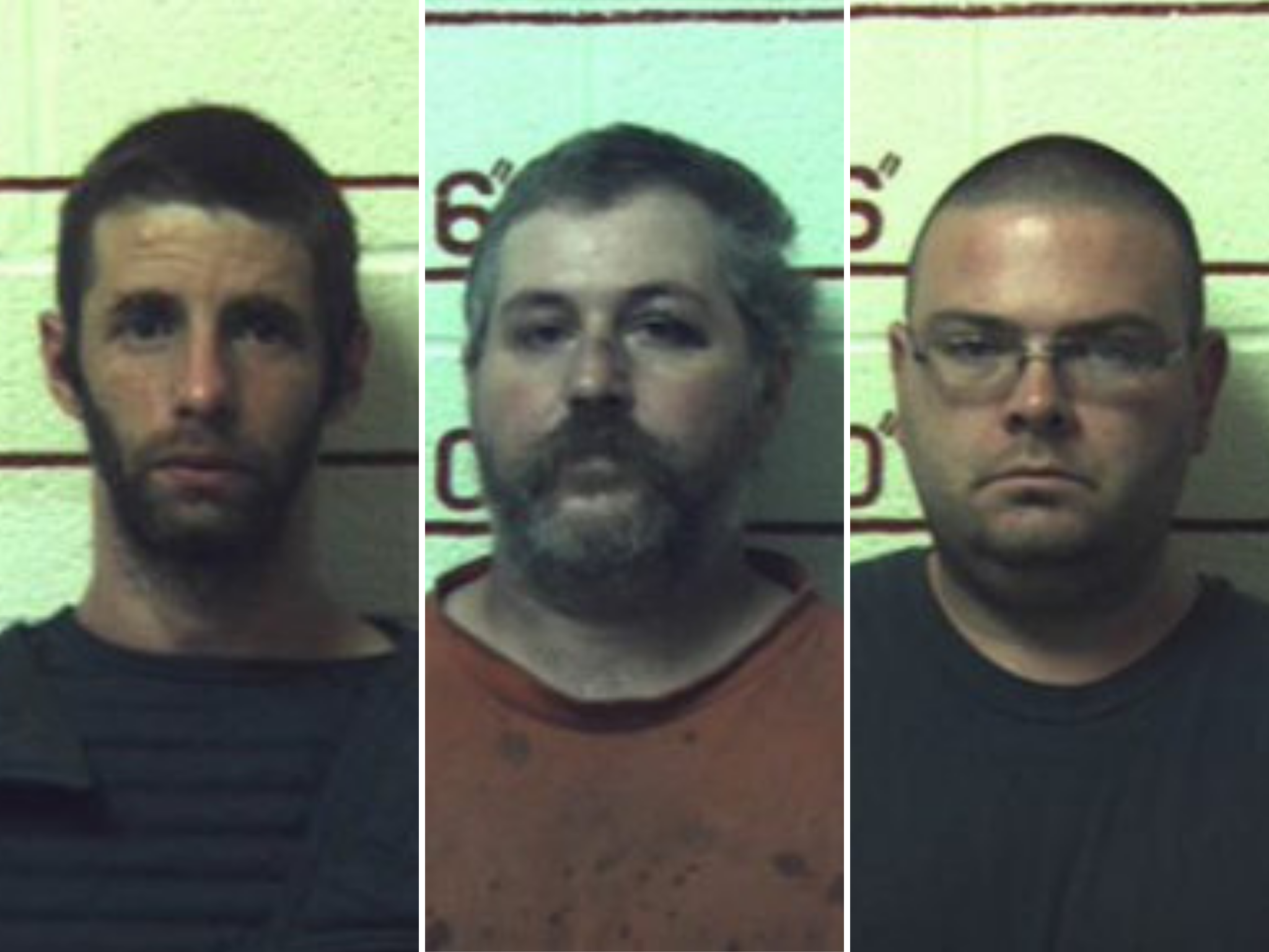 Three men jailed for sex with cow, goat, nine horses and an unknown number of dogs