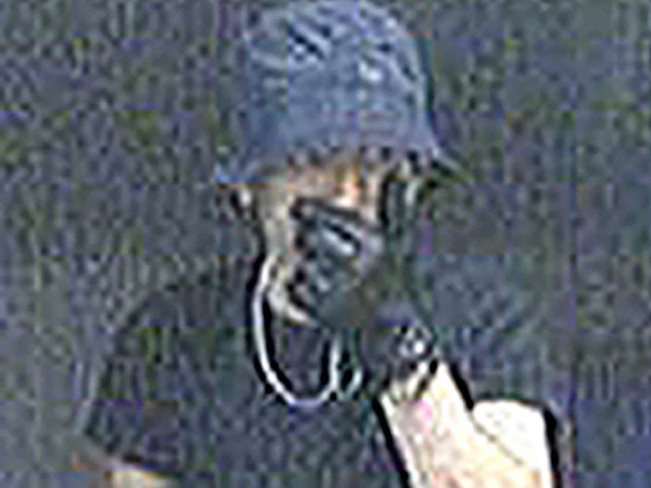 'Wimbledon Prowler' who stole £500,000-worth of loot from London homes unmasked as Kosovan chip shop owner