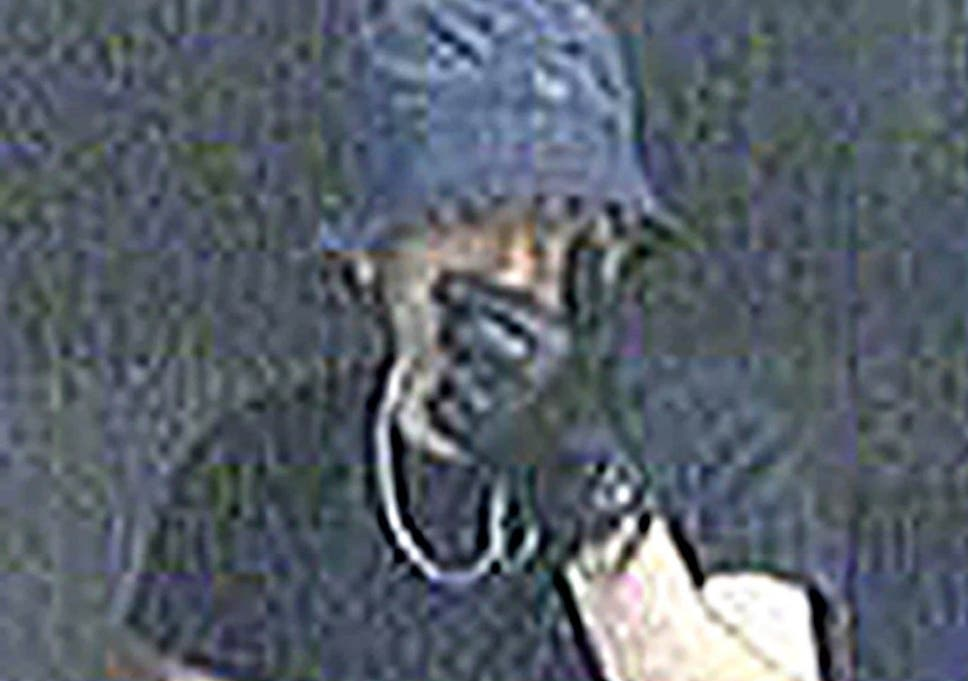 Wimbledon Prowler' who stole £500,000-worth of loot from affluent