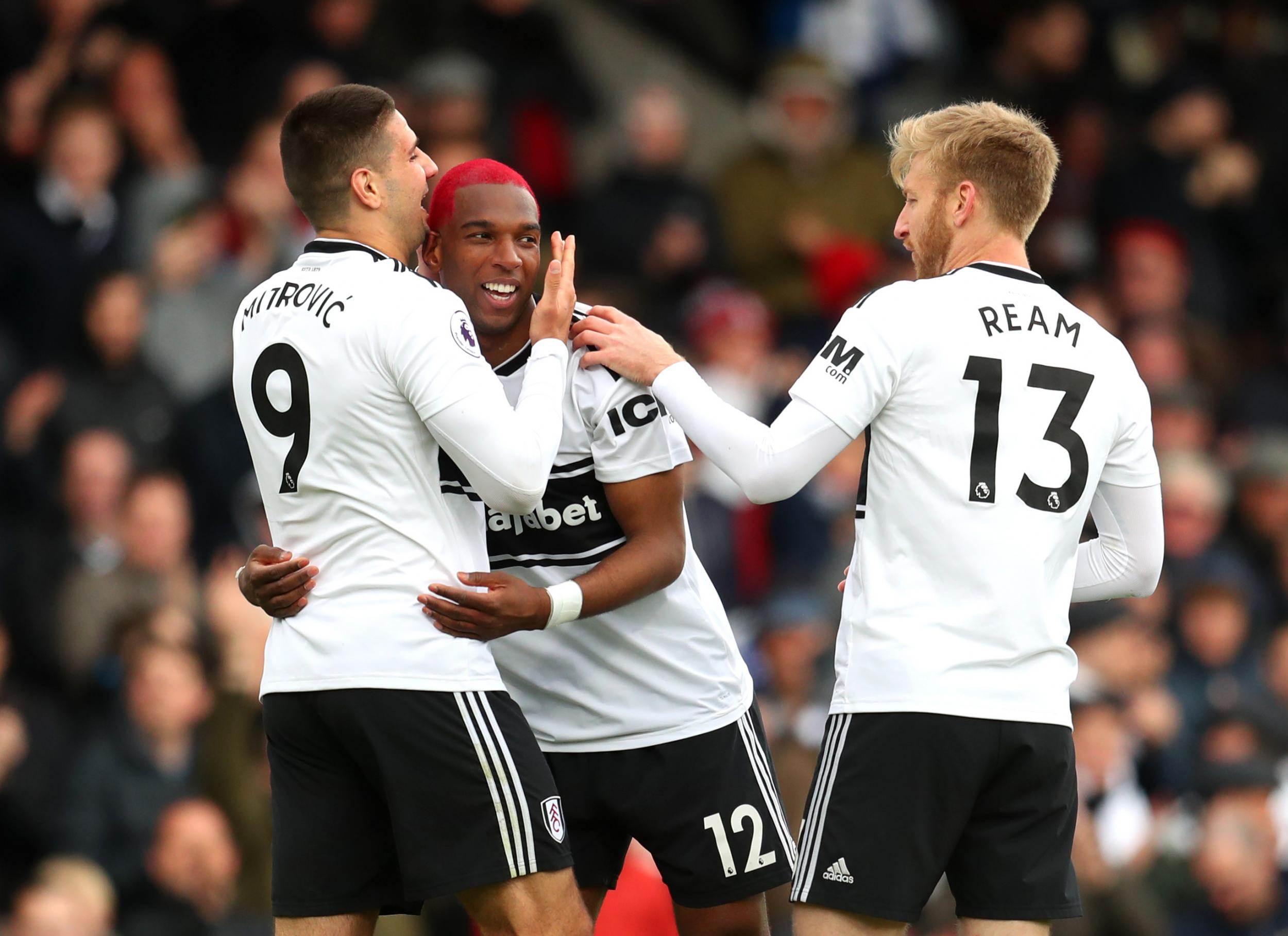 Fulham vs Cardiff: Ryan Babel wins it late to damage Welsh club's slimming survival hopes