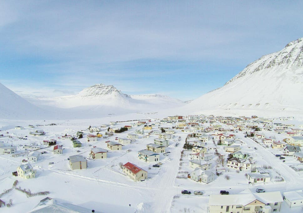 Why Iceland's greenhouse-to-table restaurant scene could be the