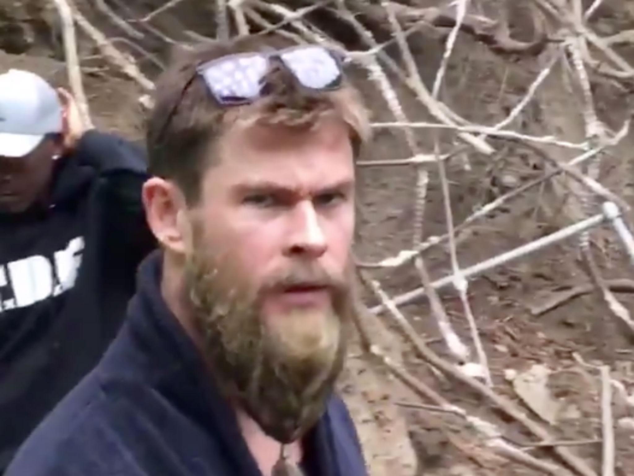 Avengers: Endgame video – MCU's Chris Hemsworth tells Chris