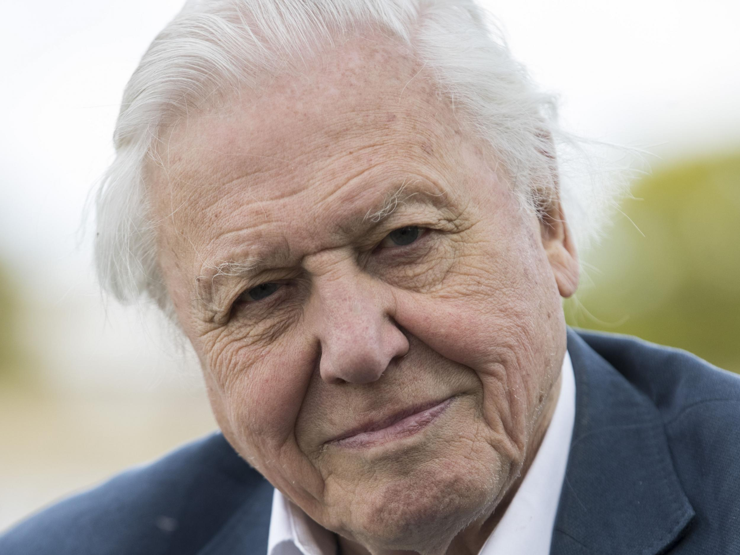 David Attenborough says people are 'fed up' with EU but refuses to s…