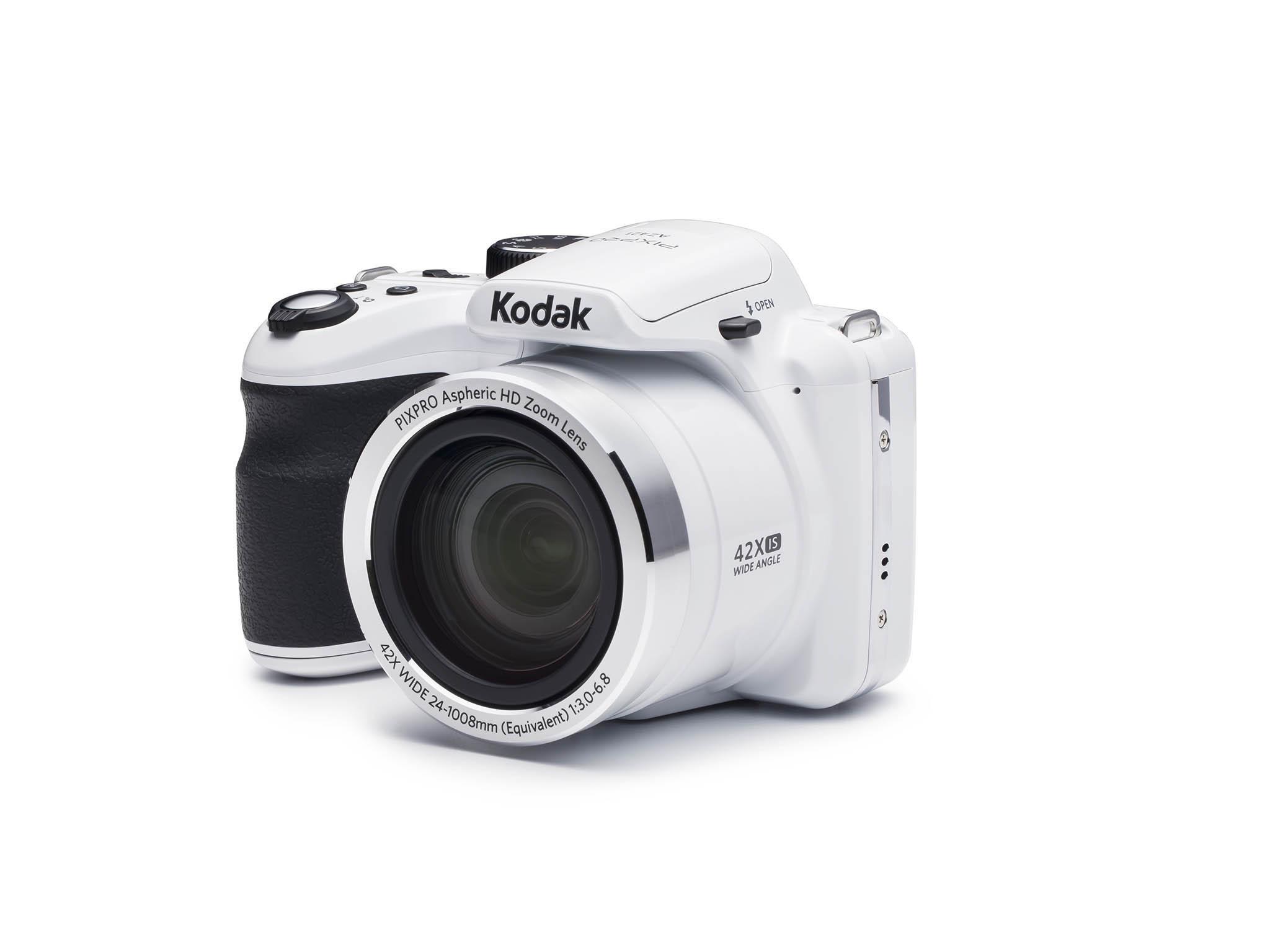 Best bridge cameras: From beginners to shooting wildlife
