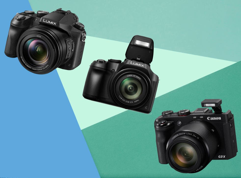 Positioned between point and shoot compacts and the larger and more complex SLRs, this variety comes into their own in wildlife and amateur sports photography