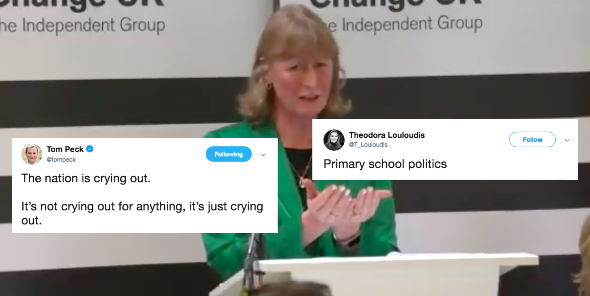 A Change UK MP gave an incredibly cringeworthy speech about Brexit and everyone is making the same joke
