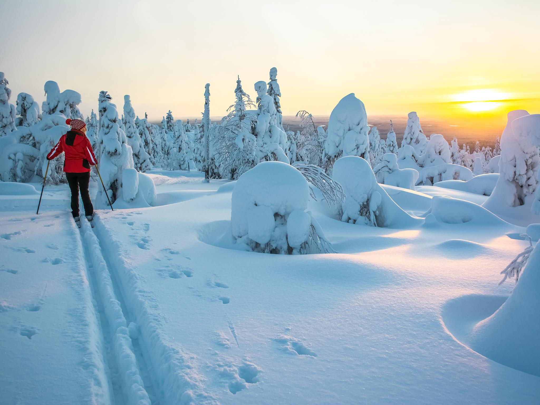 Finland vows to become carbon neutral by 2035 | The ...