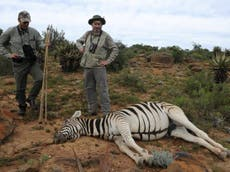 Hunting group 'undermining protections for endangered animals'