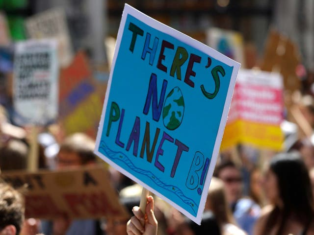 Young demonstrators take part in a global climate protest in London last month