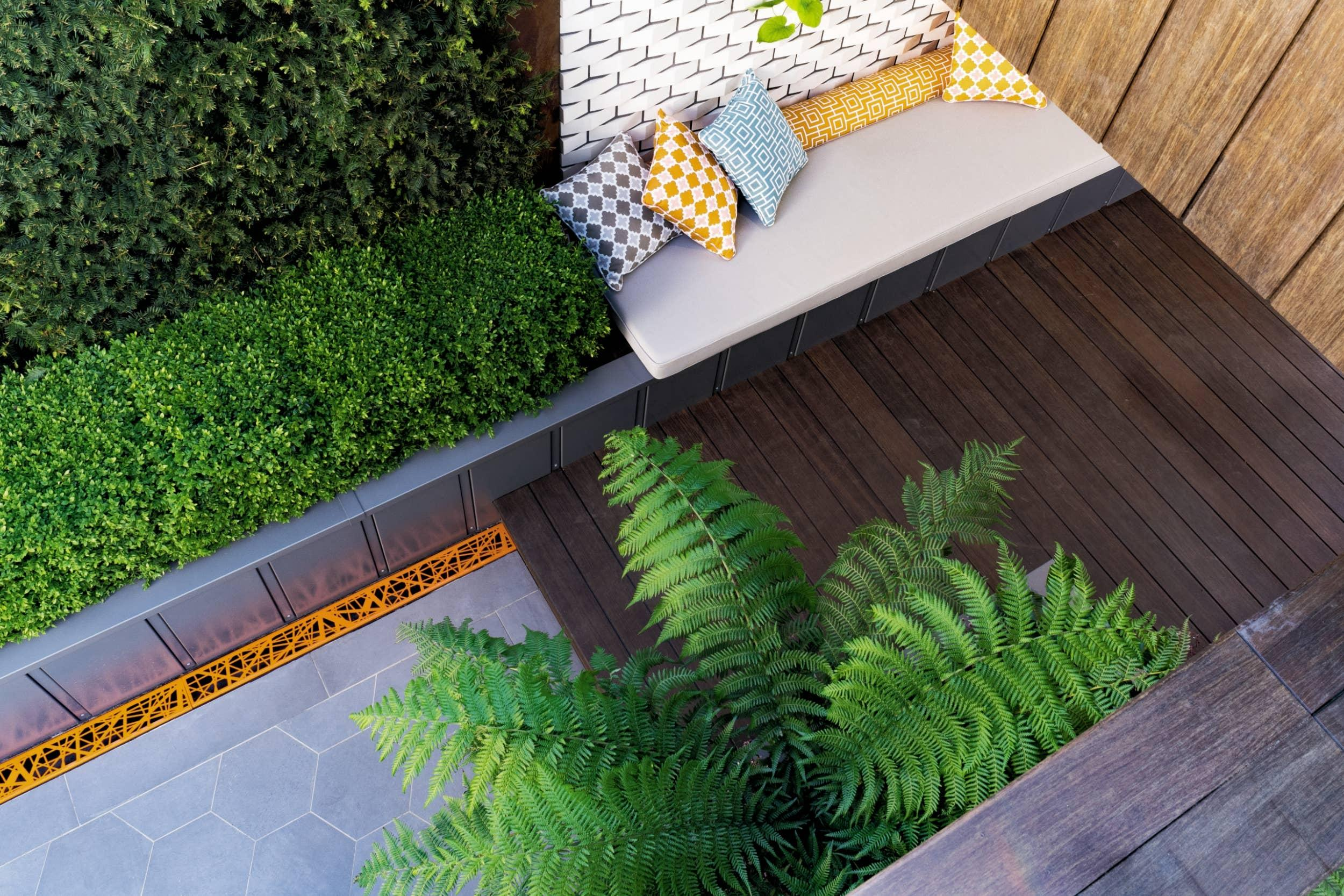 How to transform your outside space with just one plant