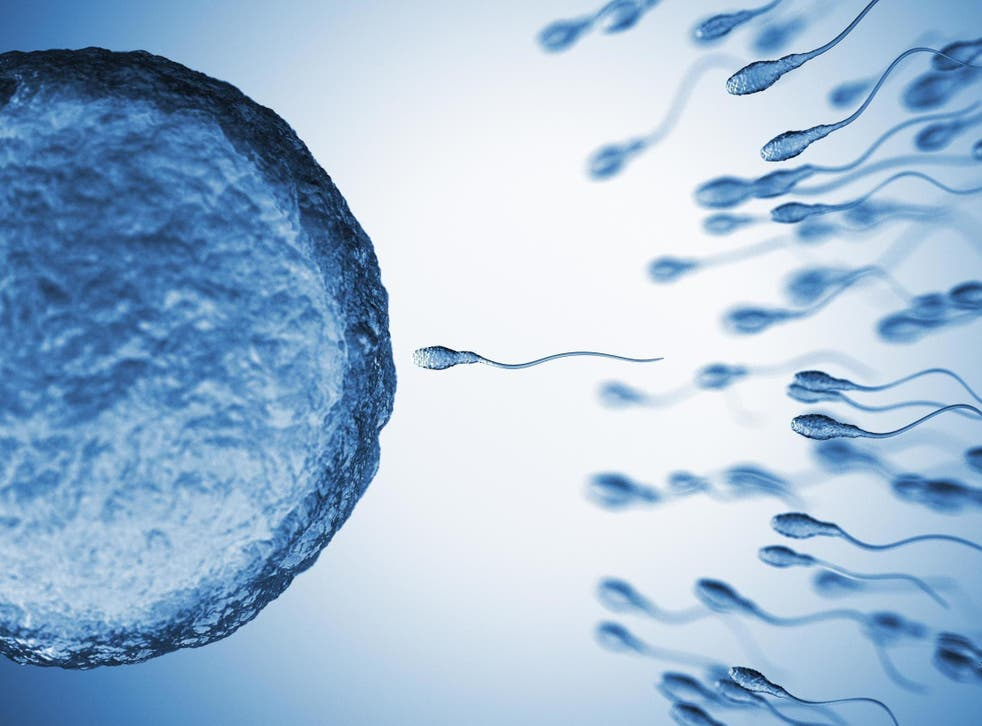 put Sperm in from men rats taken and