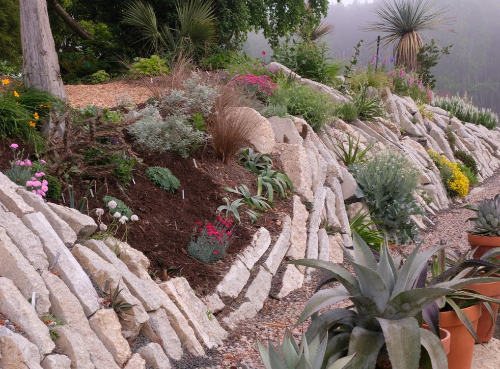 This garden is formed from 200 tons of recycled concrete, and allows the cultivation of rare plants