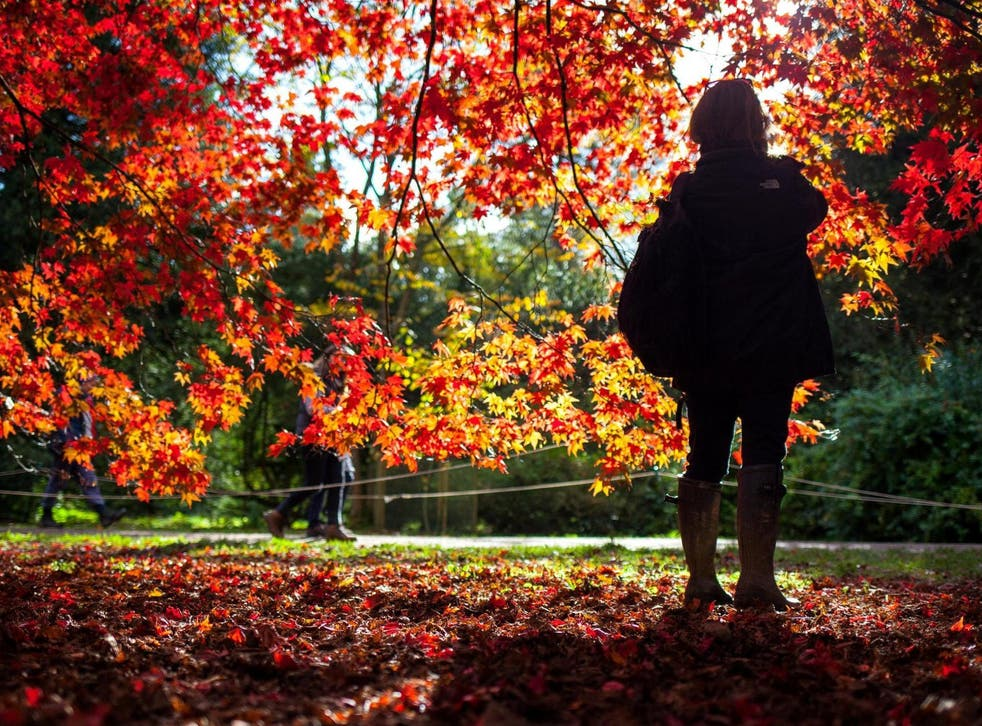 New research suggests women's work-life balance prohibits them from experiencing nature