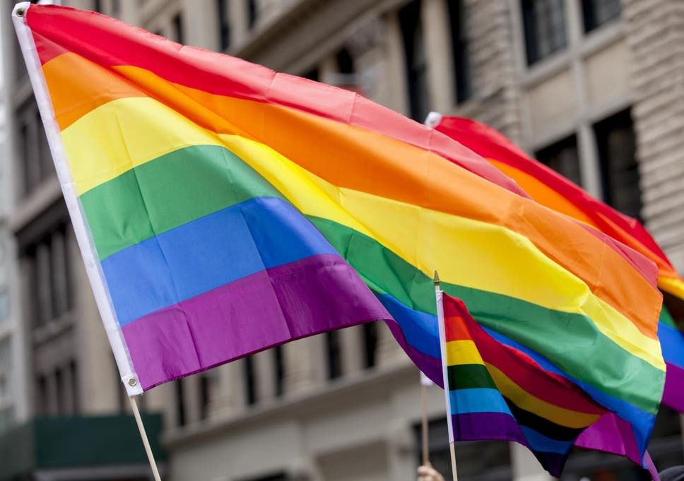 LGBT+ rights: Support from university professionals is much