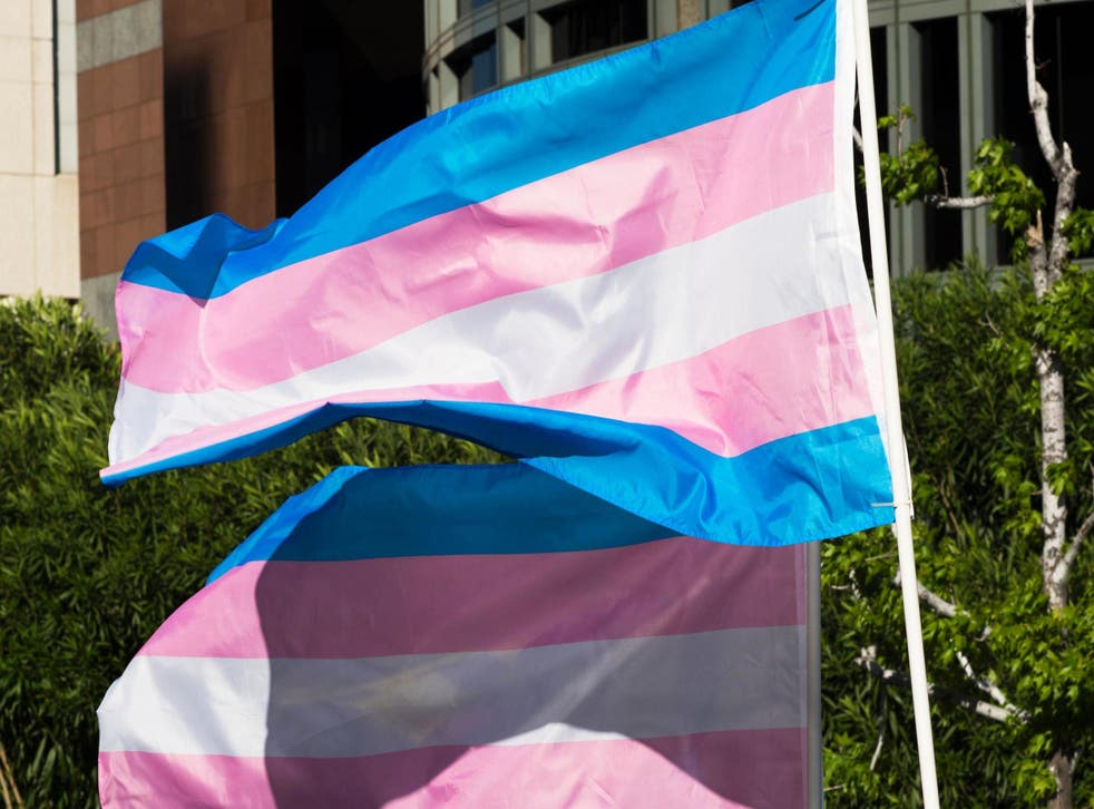 Trans pride flags flutter in the wind at a gathering to celebrate the International Transgender Day of Visibility on 31 March, 2017 in Los Angeles, California.