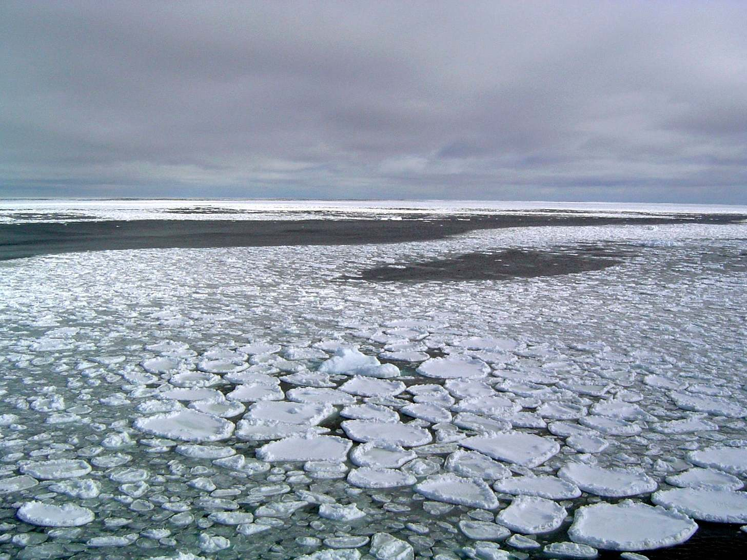 Harsh winters are not triggered by loss of Arctic sea ice, study fin…