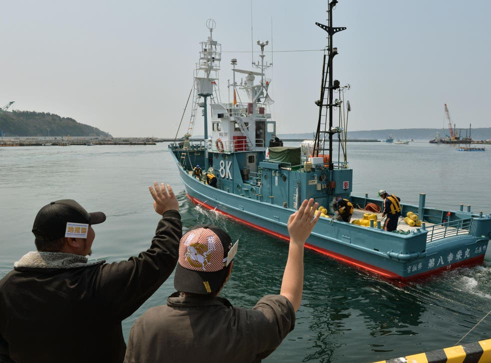 Japan recently renewed its ancient practice of whaling, but tastes for the meat are closely tied up in nostalgia which eludes younger citizens