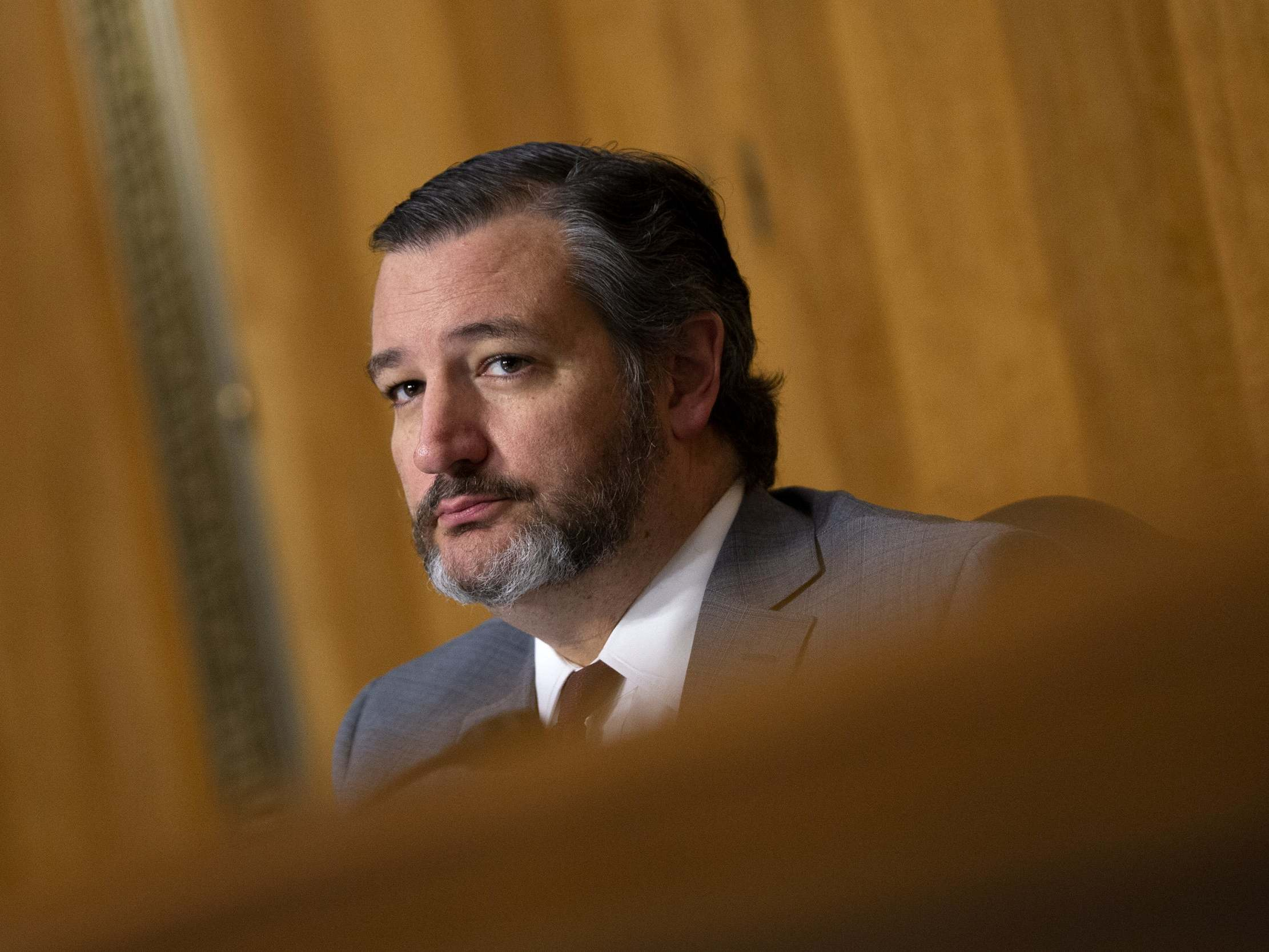 Ted Cruz unwittingly makes himself pro-choice with outrage over vasectomy bill - independent