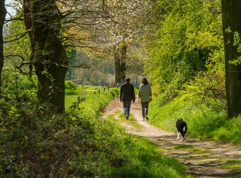 Majority of British poll respondents escape to a 'happy place'