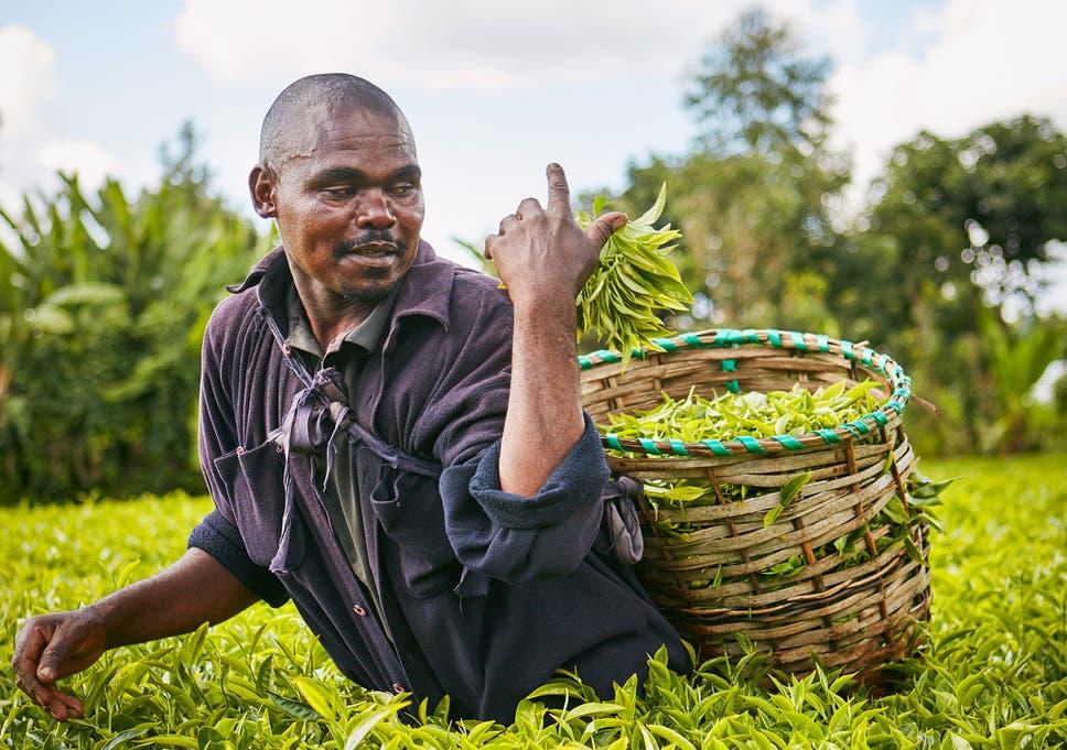 free dating in meru kenya