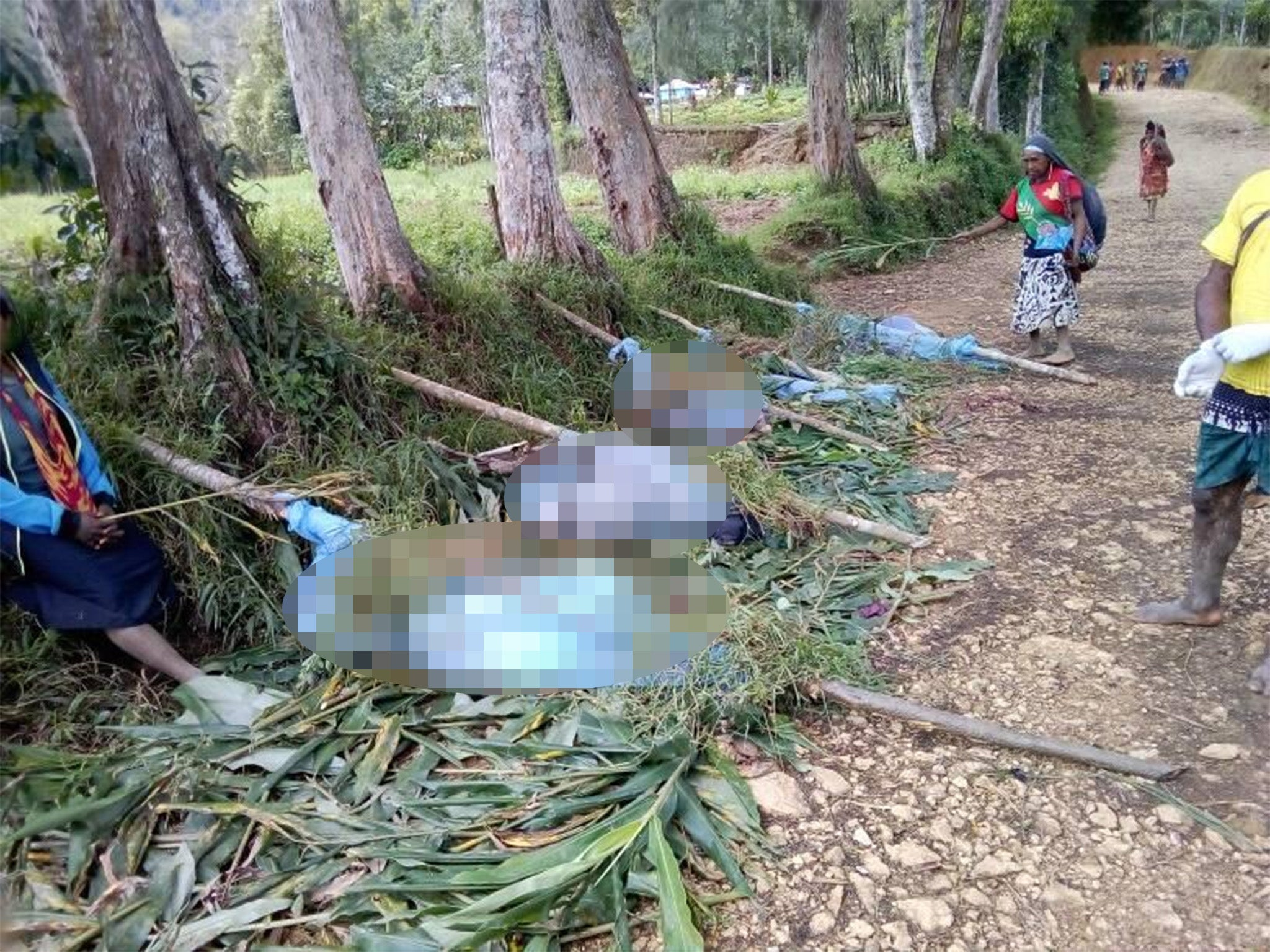 Tribal massacre sees pregnant women and children among dozens hacked to death in Papa New Guinea