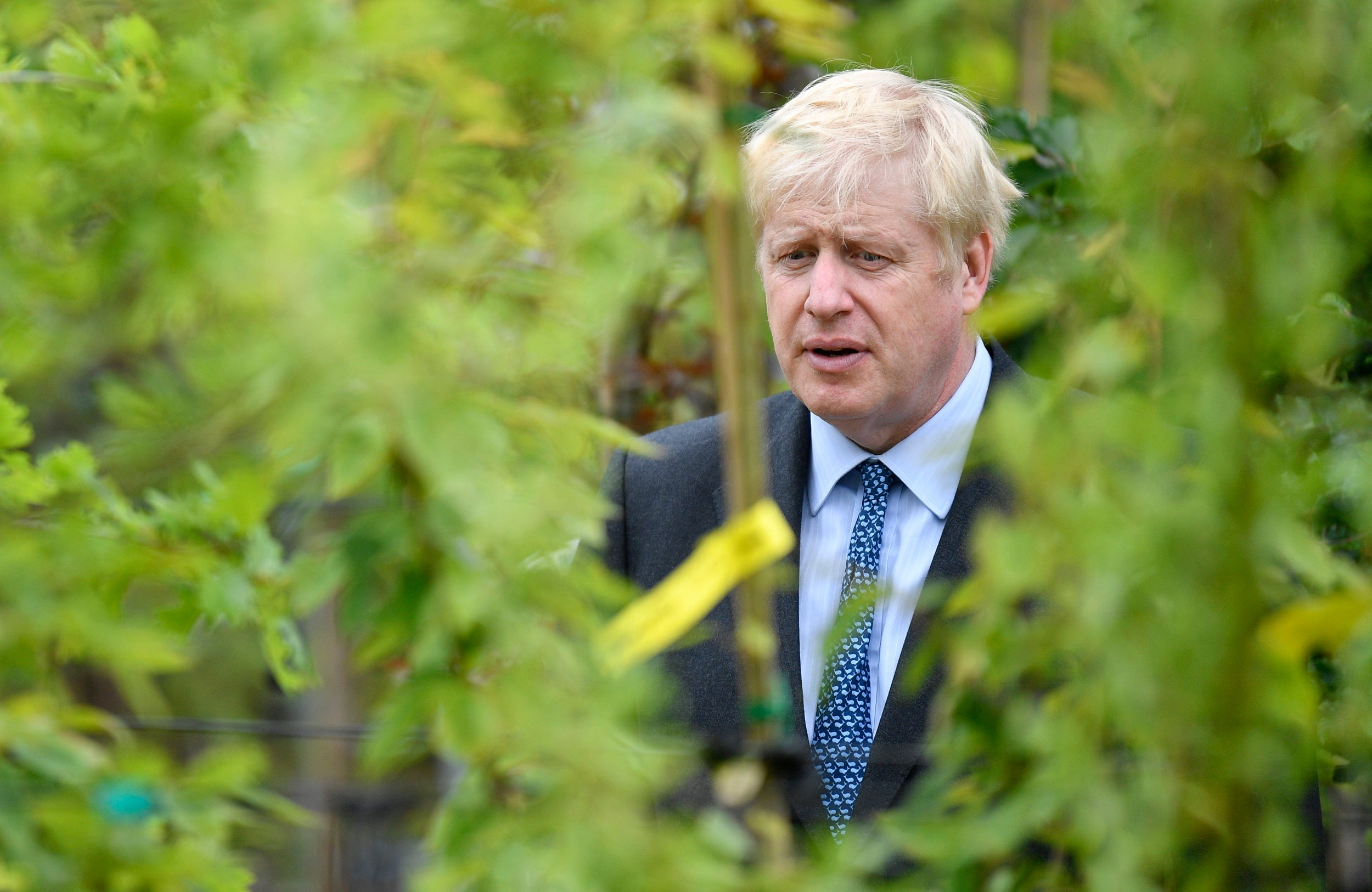 Senior Tory reveals plot to oust Boris Johnson on first day as PM in extraordinary revelation