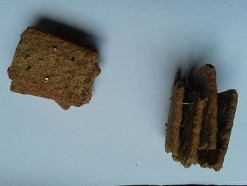 Dog biscuits found studded with nails in public park