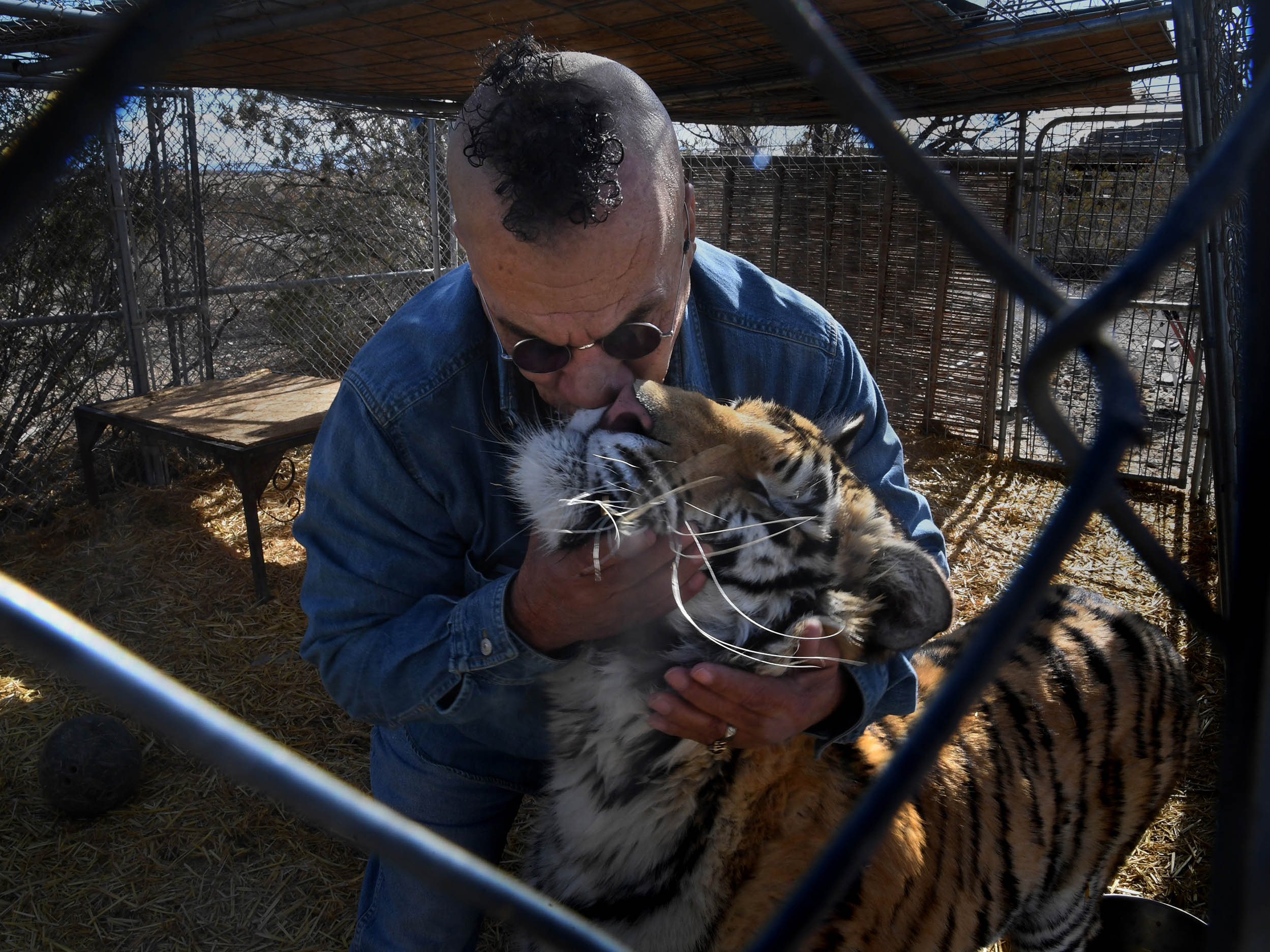 The problem with exotic animal ownership in America | The