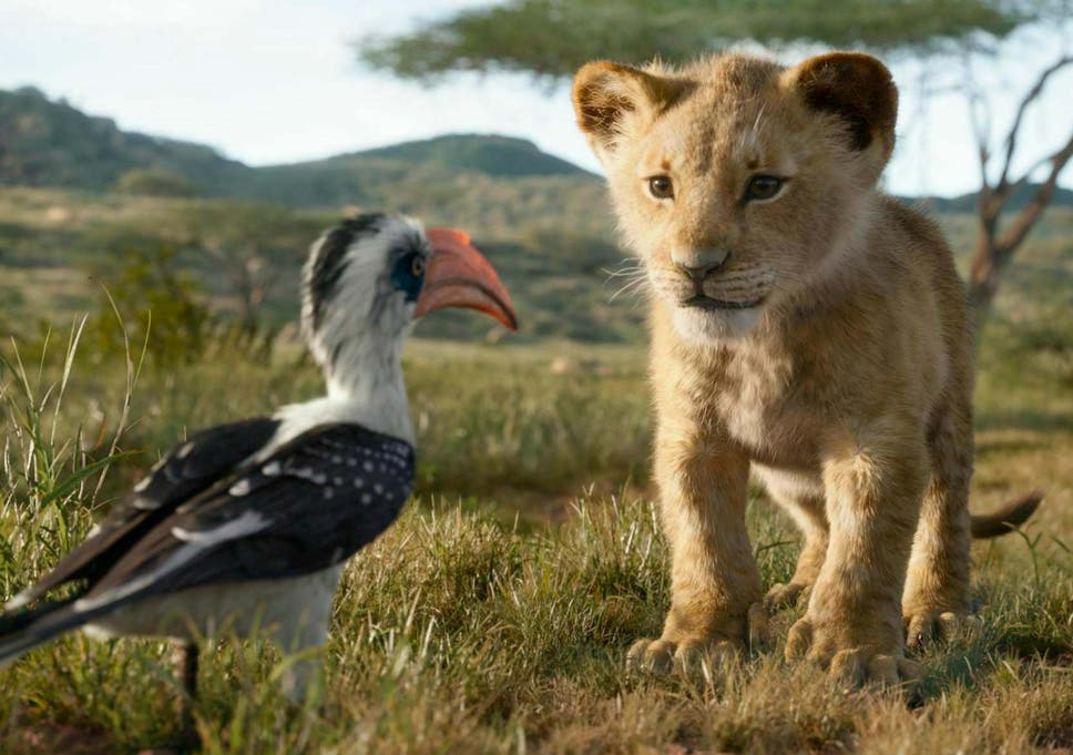 The Lion King Cast Anyone Can Identify With These