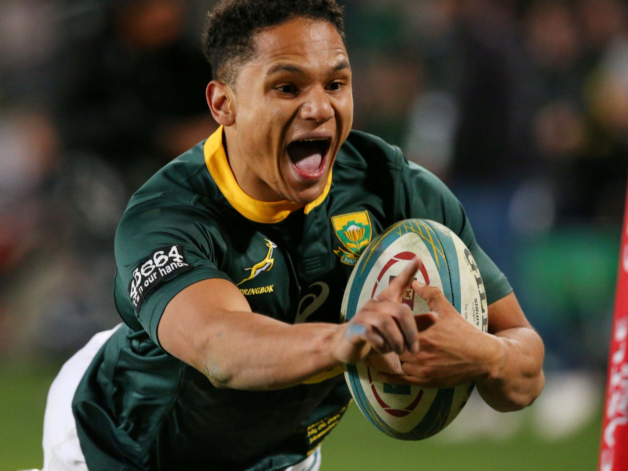 Rugby Championship 2019: Herschel Jantjies enjoys dream debut as South Africa defeat Australia