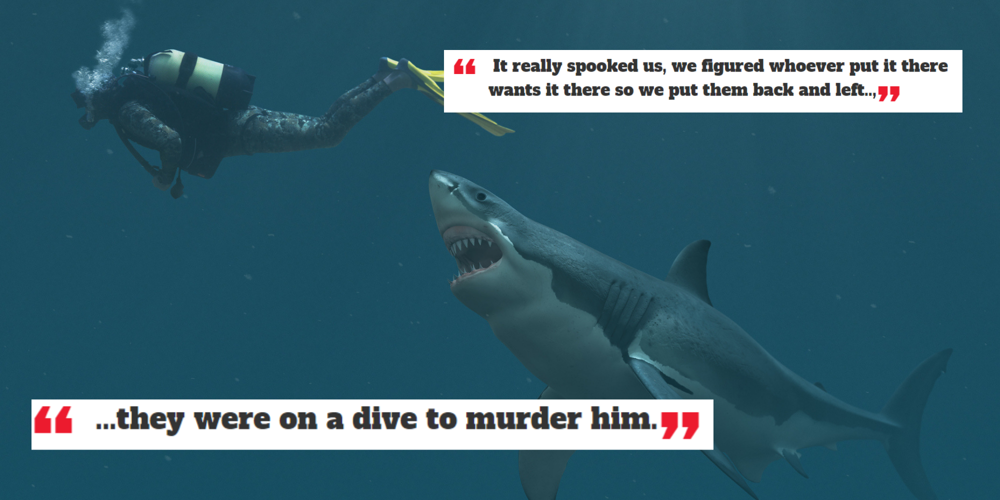 Divers on Reddit share the scariest things they've seen